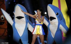 Shark_katy_perry